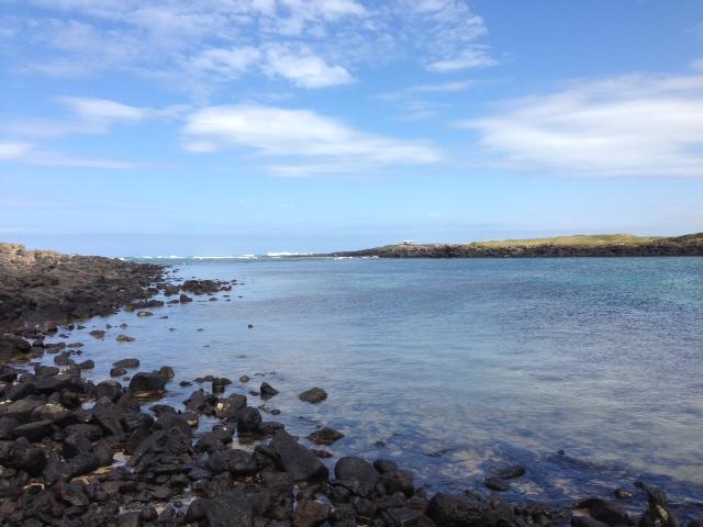 Marine and Coastal Ecology