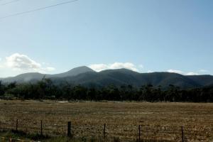 Tasmanian Countryside