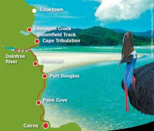 p-map-daintree