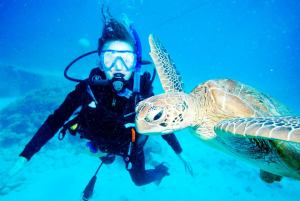 me with the sea turtle