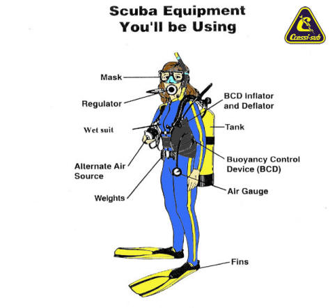 Exploring sydney and cairns part 2 conservation for Scuba dive equipment